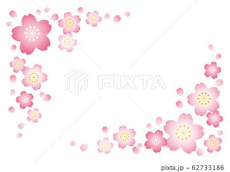 桜フレーム【白背景】 62733186