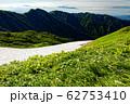 高山植物咲く夏の飯豊山稜線 62753410