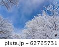三重県 冬の御在所山頂 樹氷 霧氷 62765731