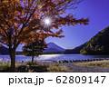 (山梨県)精進湖、湖畔の紅葉と富士山 62809147