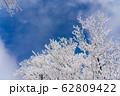 三重県 冬の御在所山頂 樹氷 霧氷 62809422