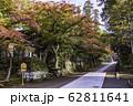 (神奈川県)秋の円覚寺 境内の紅葉 62811641