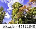 (神奈川県)秋の円覚寺 境内の紅葉 62811645
