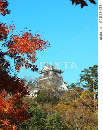 秋の高知城 62813458