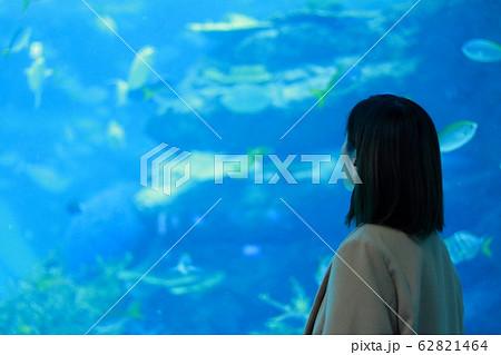 水族館 女性 ポートレート 62821464