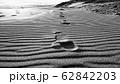 風紋と足跡 62842203