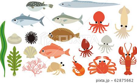 魚介類 62875662