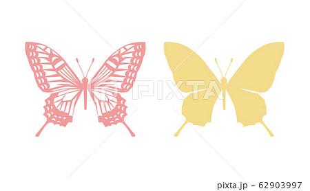 アゲハ蝶のシルエット 62903997