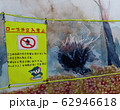 水彩画 風景画 台風19号の爪痕 62946618