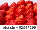 いちご 果物 62967299