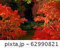 写真素材:滝と紅葉 62990821