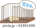 ゴールデンレトリバーの子犬(サークルの中で寝る2) 62991086