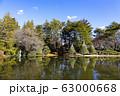 【東京都】早春の神代植物公園 63000668