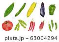 10種類の夏野菜 水彩 イラスト 63004294