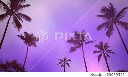 Panoramic view of tropical landscape with palm 63059593