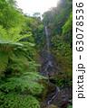 嘉入の滝 (奄美群島 加計呂麻島) 63078536