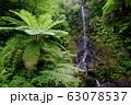 嘉入の滝 (奄美群島 加計呂麻島) 63078537