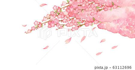 手描き水彩|桜のイラスト素材 63112696