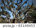 曹洞宗總持寺(そうじじ) 神奈川県横浜市鶴見区 63149453