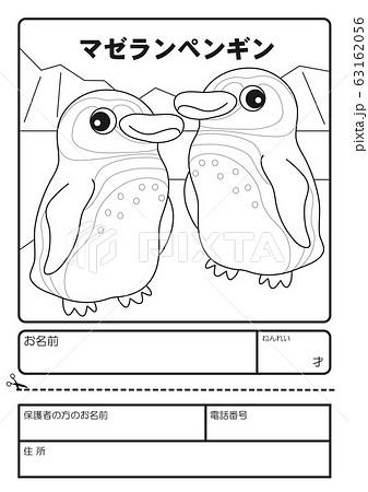 マゼランペンギン ぬりえ 応募用紙 63162056