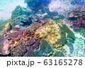 海 写真 63165278
