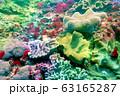 海 写真 63165287