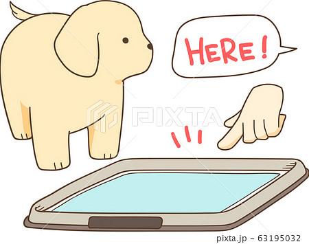 トイレ の しつけ 子犬