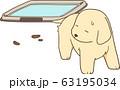 ゴールデンレトリバーの子犬(トイレを失敗する) 63195034