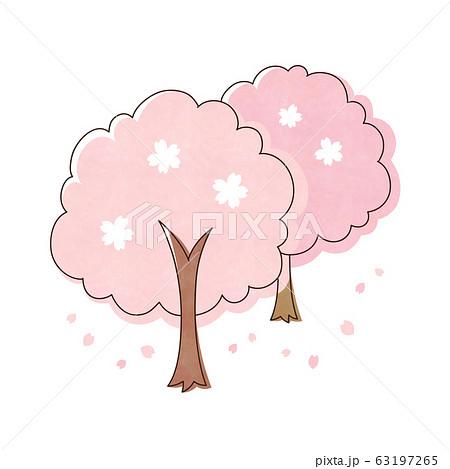 桜の木  2本 63197265