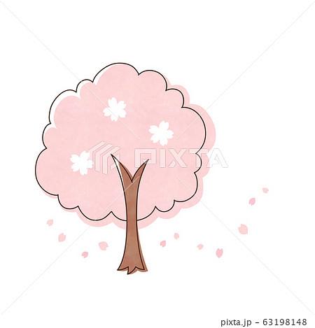 桜の木 63198148