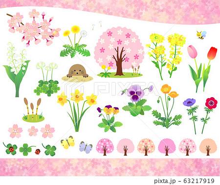 春の花と植物 イラストセット 63217919