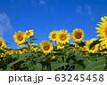ヒマワリ・三ノ倉高原(福島県・喜多方市) 63245458