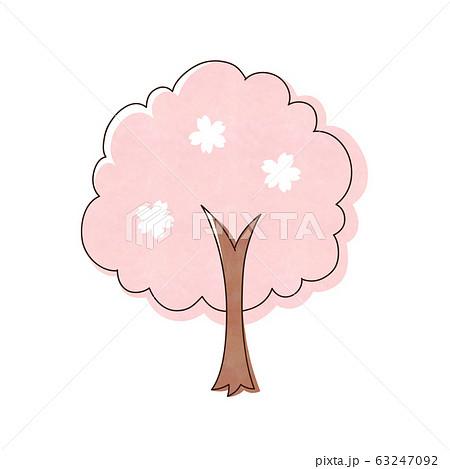 桜の木 63247092