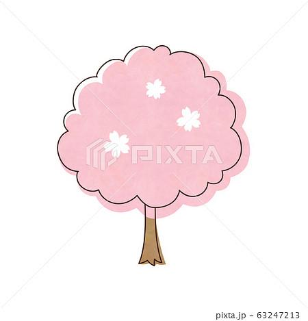 桜の木 63247213