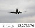 伊丹空港 飛行機 着陸態勢 63273379