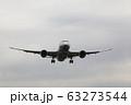 伊丹空港 飛行機 着陸態勢 63273544