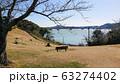 浜名湖 63274402