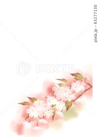 山桜 63277130
