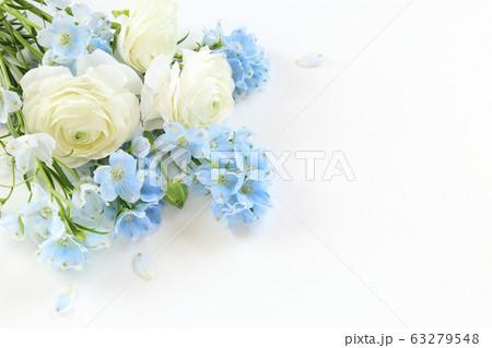 白とブルーの花 63279548
