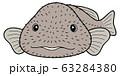 ニュウドウカジカ(ブロブフィッシュ)イラスト ベクター 63284380