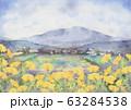 タンポポ風景画 63284538