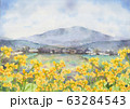 菜の花風景画 63284543
