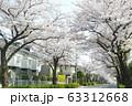 東玉川学園桜並木2 63312668