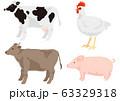 畜肉の動物セット 乳牛 肉牛 鶏 豚 63329318
