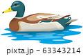 鴨 63343214