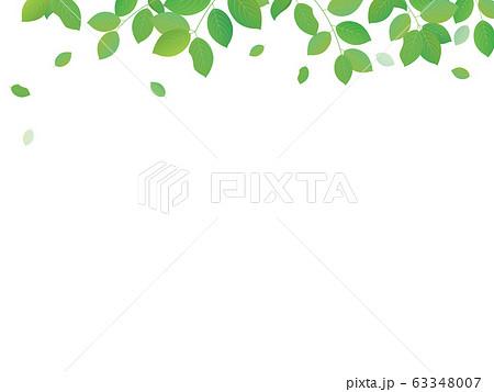 新緑のイラスト フレームメッセージカード 63348007