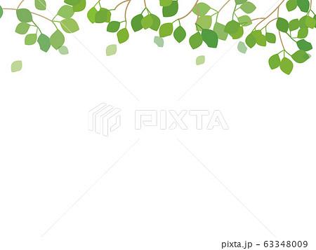 新緑のイラスト フレームメッセージカード 63348009