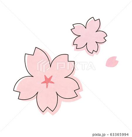 桜の花 63365994
