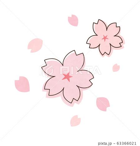 桜の花 63366021