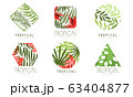 Tropical Logo Design Collection, Geometric Badges with Exotic Leaves and Flowers Vector Illustration 63404877